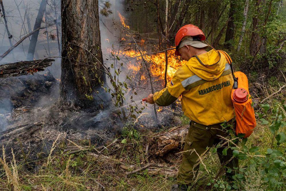 Более 900 лесных пожаров в Якутии возникли из-за сухих гроз