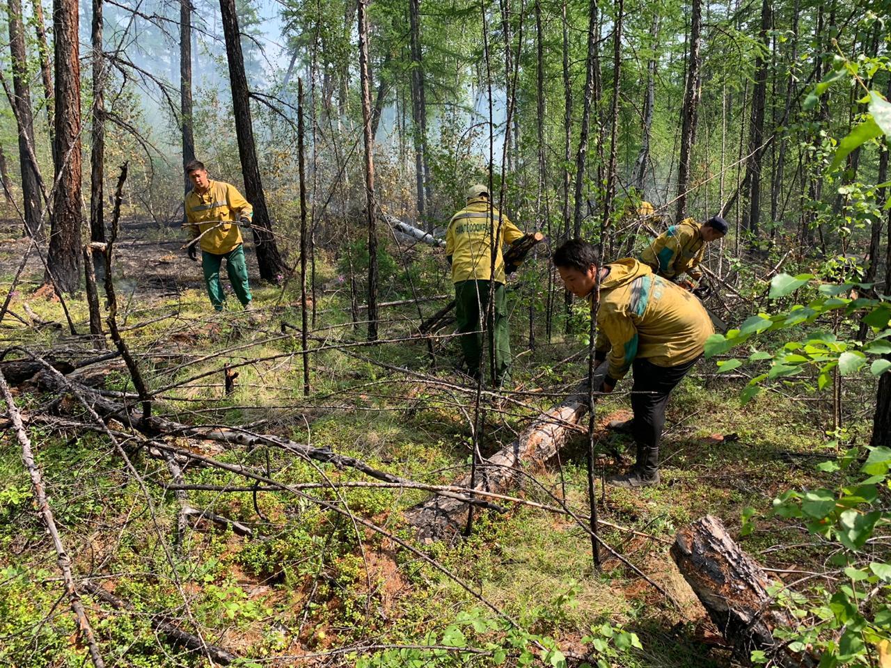 Айсен Николаев: Ни один лесной пожар не зашел на территорию населенного пункта в Якутии