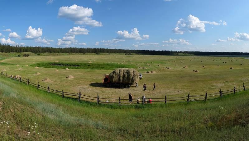 Свыше тысячи тонн сена заготовили в Чурапчинском районе Якутии