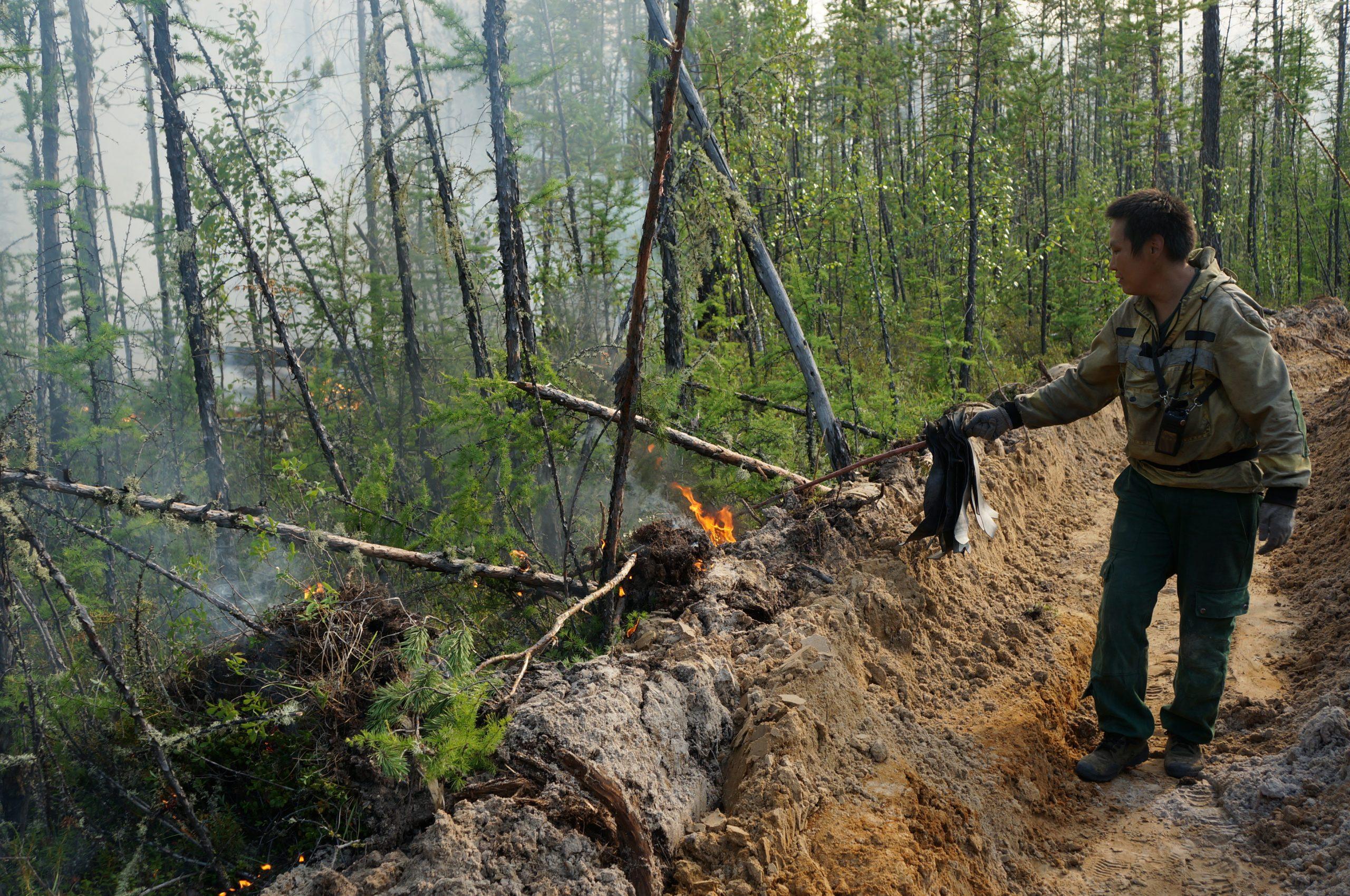 Встречный отжиг лесных пожаров проведут в Горном районе Якутии