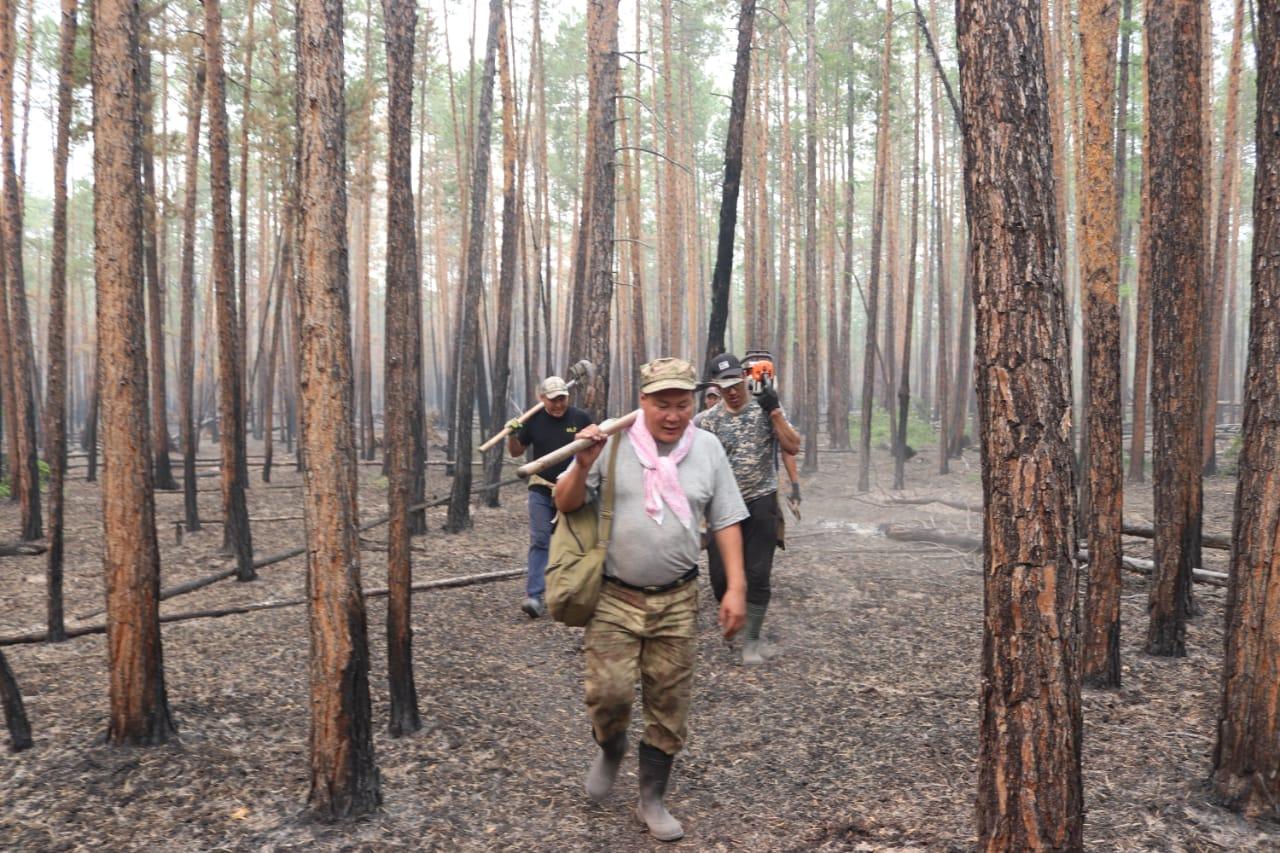 Девять лесных пожаров ликвидировали в Якутии за сутки