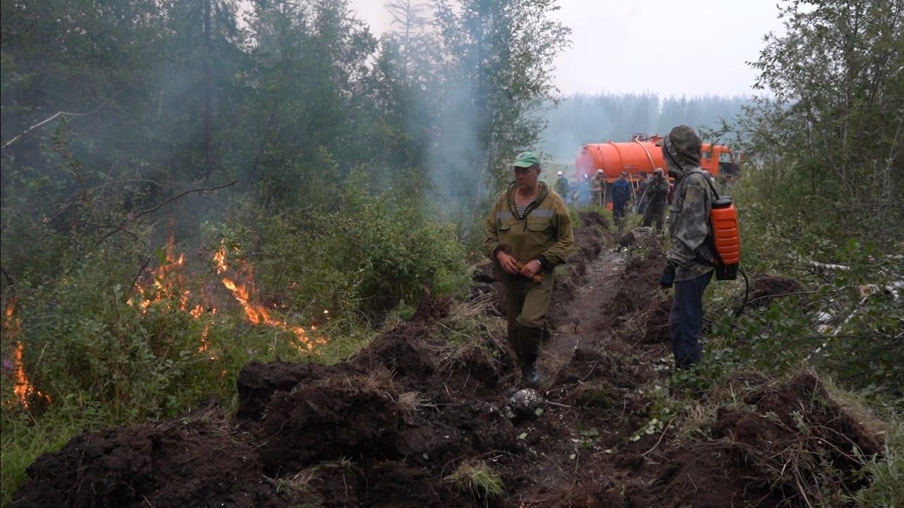 15 лесных пожаров потушили в Якутии за сутки