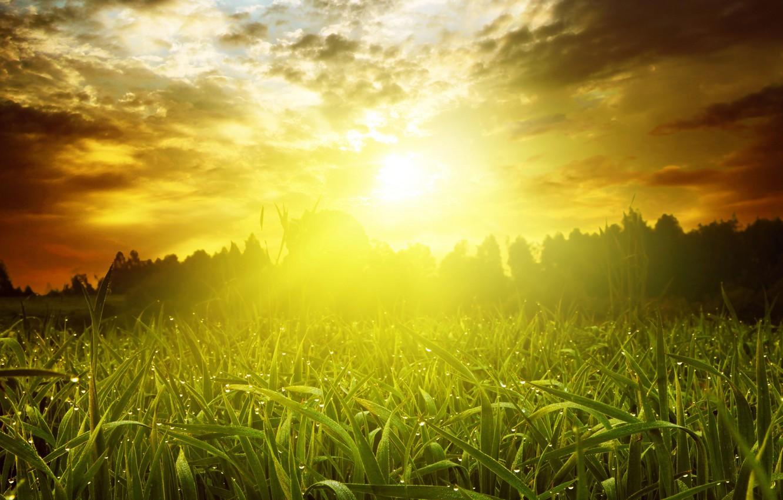 Жаркая погода ожидается в августе в Якутии