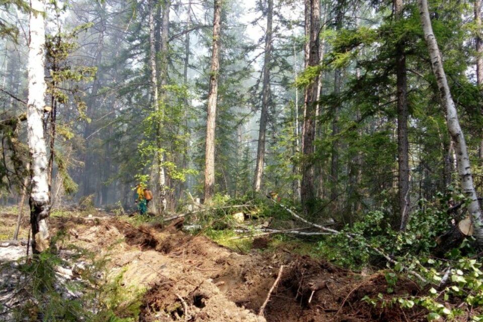 Глава Мегино-Алданского наслега в Якутии рассказал о ситуации с лесными пожарами