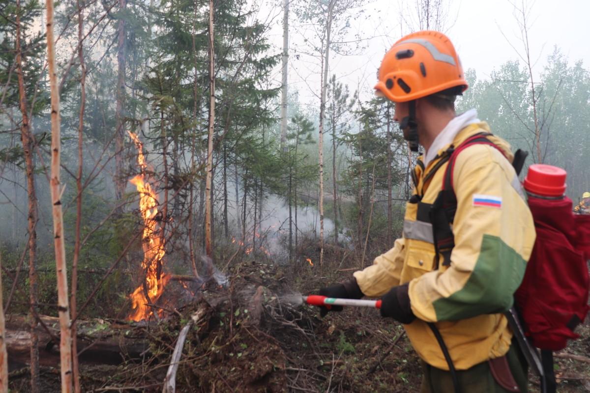 Айсен Николаев предложил создать в Якутии лесопожарный центр