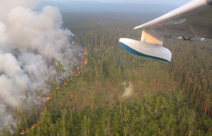 Дополнительные средства выделят на борьбу с пожарами в Якутии