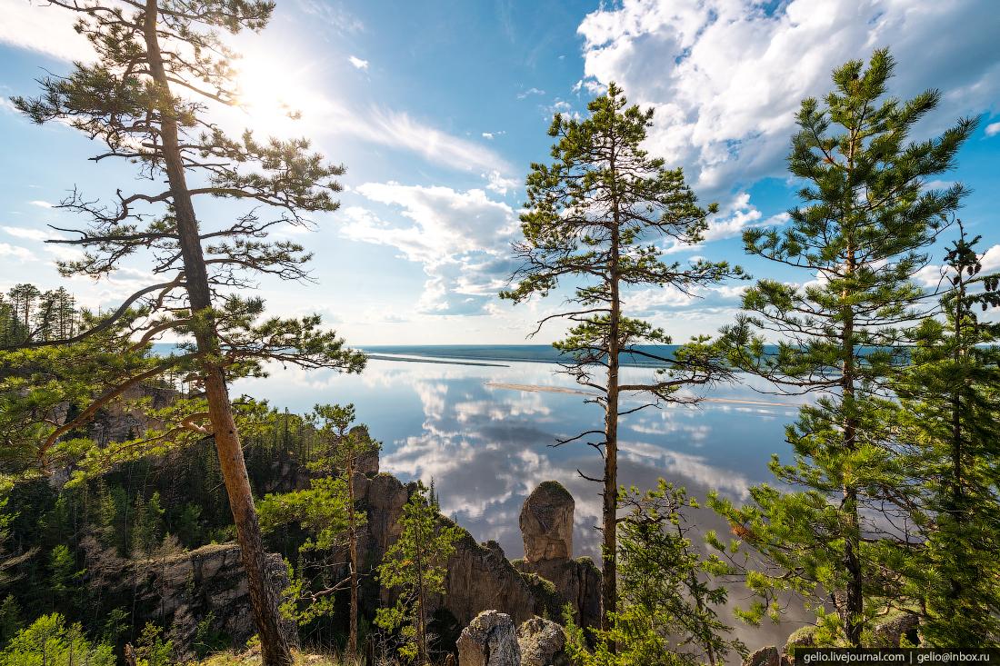 Информацию об отмене режима ЧС в лесах Якутии опровергли в оперштабе