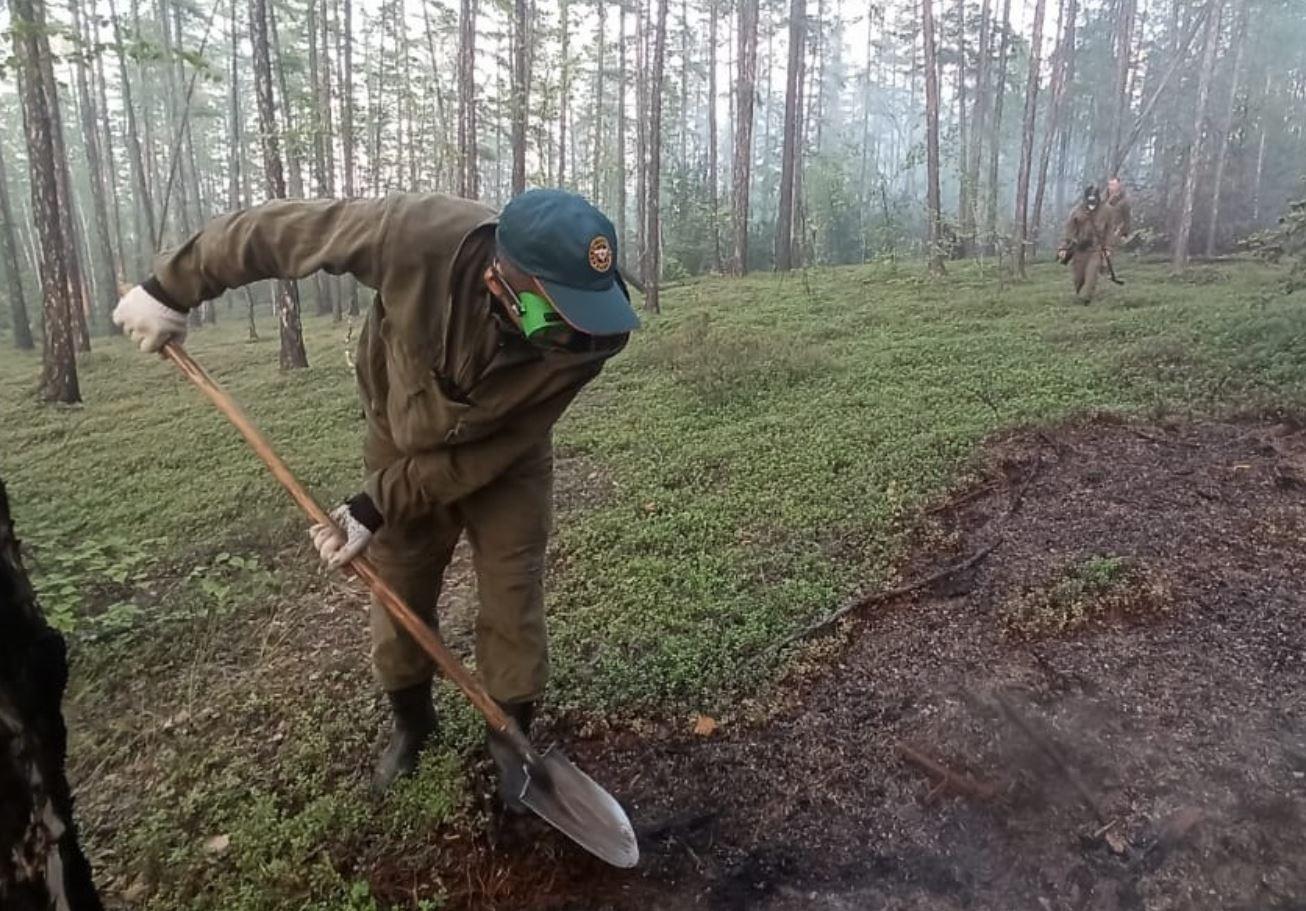 14 лесных пожаров потушили в Якутии за сутки