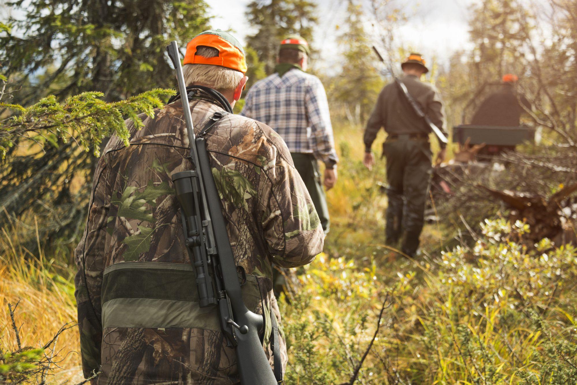Айсен Николаев подписал указ о запрете охоты до снятия режима ЧС в Якутии