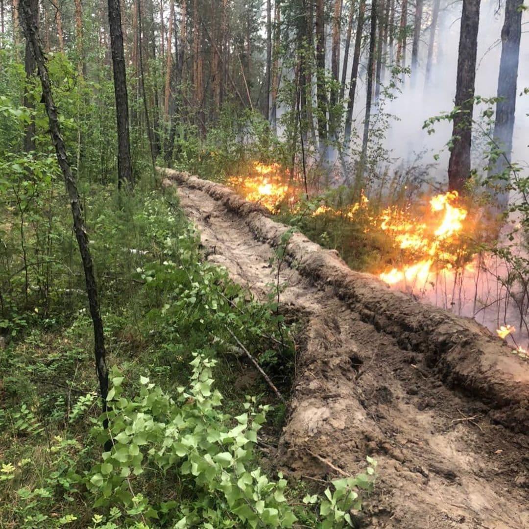 Лесной пожар обнаружили в 10 км от Якутска
