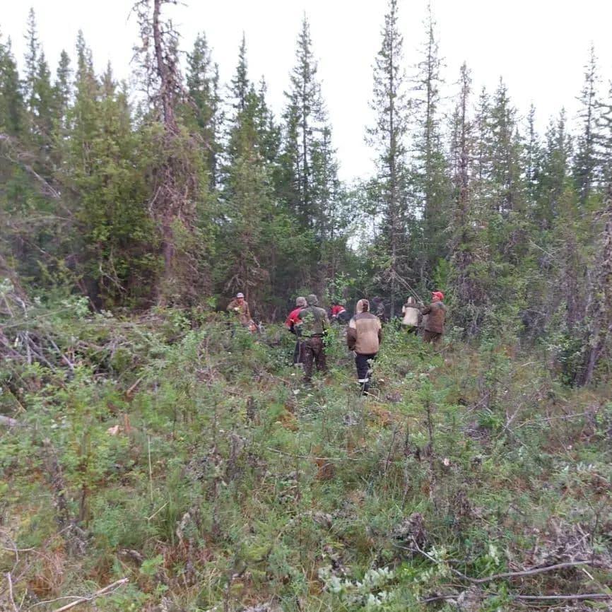 Режим ЧС отменили в лесах Мирнинского района Якутии