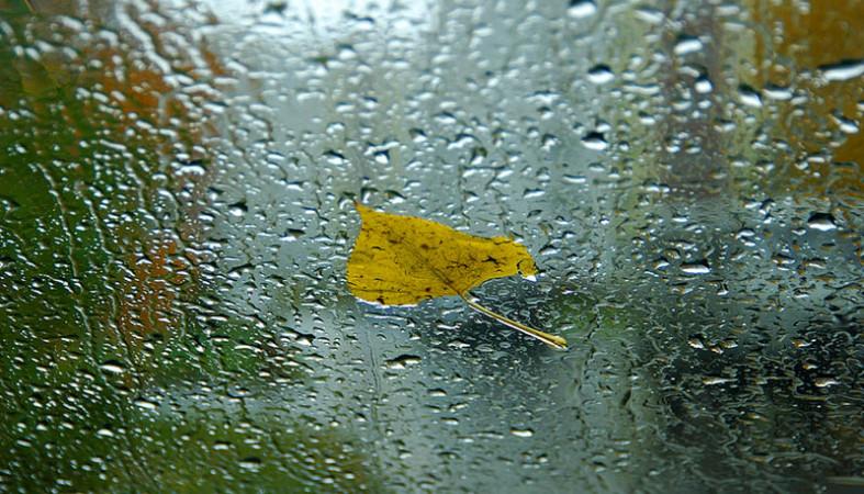Дожди и порывистый ветер прогнозируют в западных районах Якутии 15 сентября