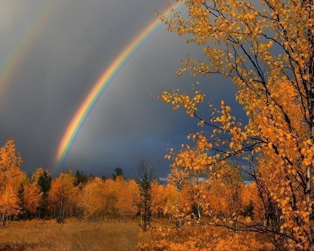Грозы прогнозируют на юге Якутии 7 сентября