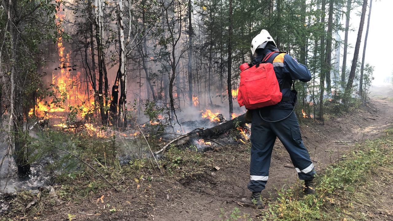 Лесные пожары на площади более 10 тыс га потушили в Якутии за сутки