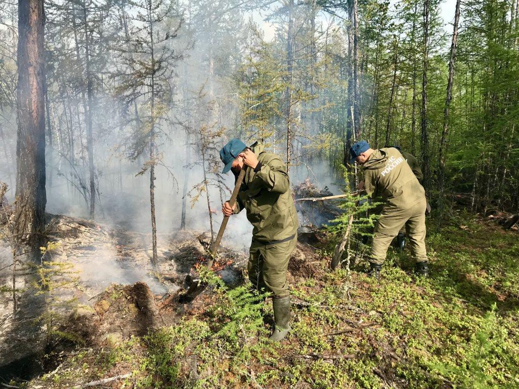 Около 130 человек и 16 единиц техники тушат лесные пожары в Усть-Майском районе Якутии