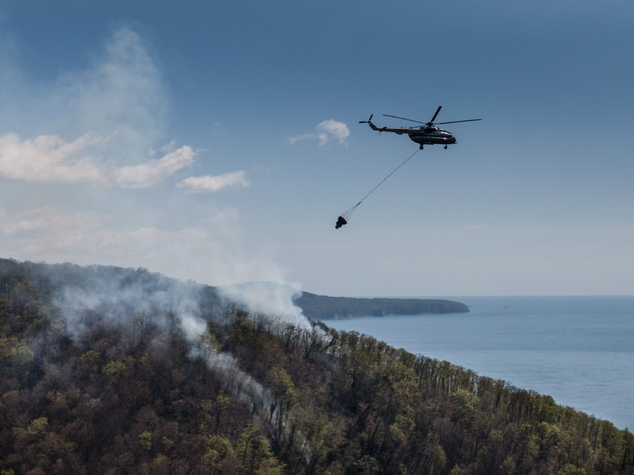Восемь млрд рублей будут получать регионы России на охрану лесов от пожаров ежегодно