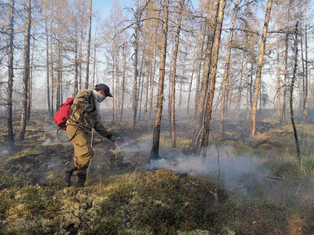 Пожары на площади более 37 тыс га ликвидировали в Якутии за сутки