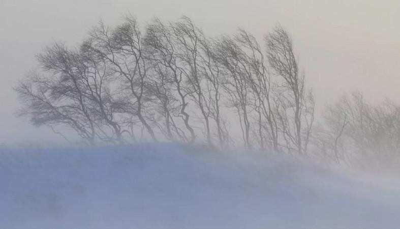 Порывистый ветер ожидается в трех районах Якутии 11 октября