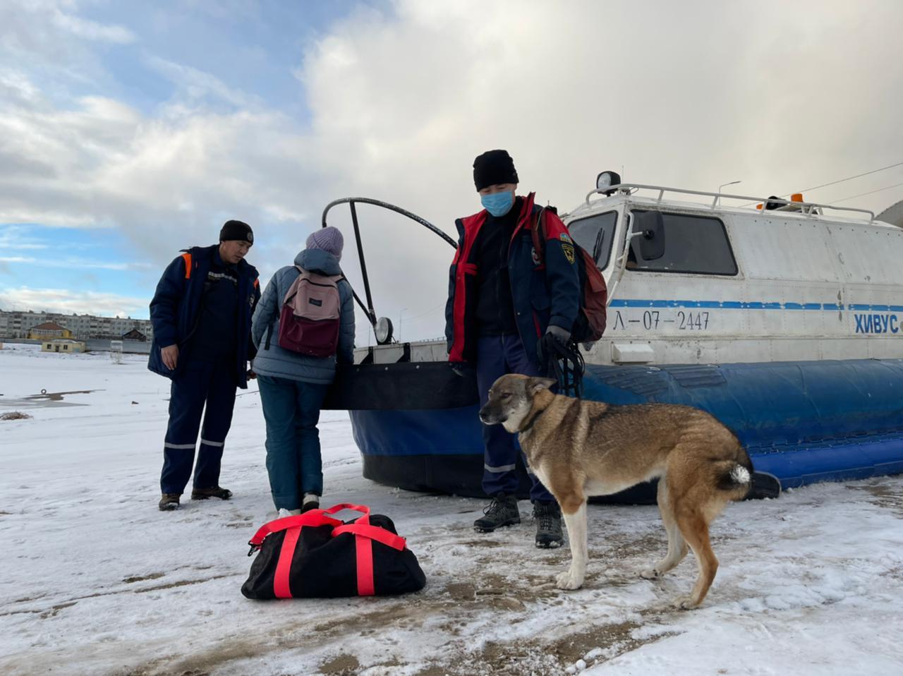 Собаку, застрявшую во льдах, спасли в Якутске