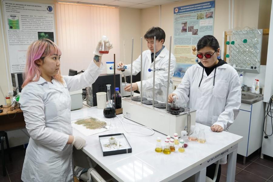 Ученые СВФУ нашли новый высокоэффективный антиоксидант в иван-чае