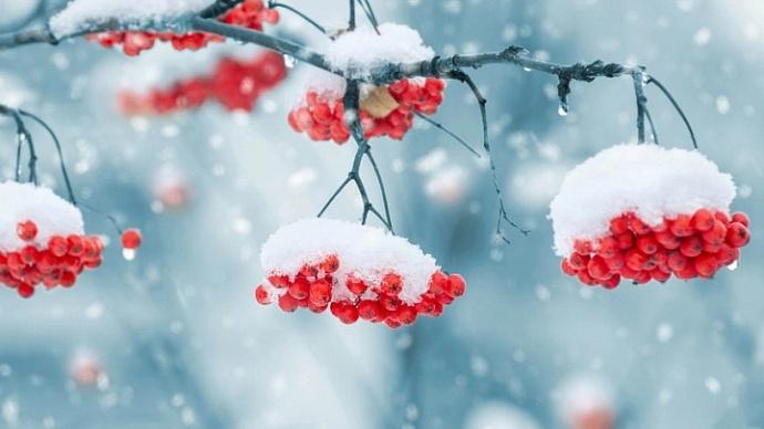 Сильный снегопад прогнозируют в трех районах Якутии 10 октября