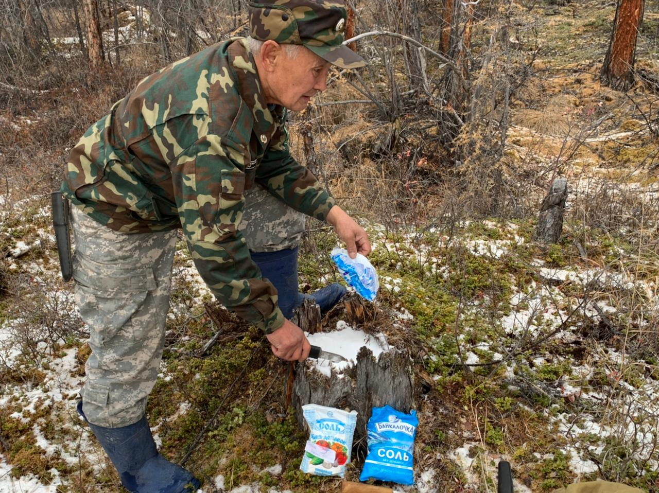 Солонцы для лосей обустроили в Момском природном парке в Якутии