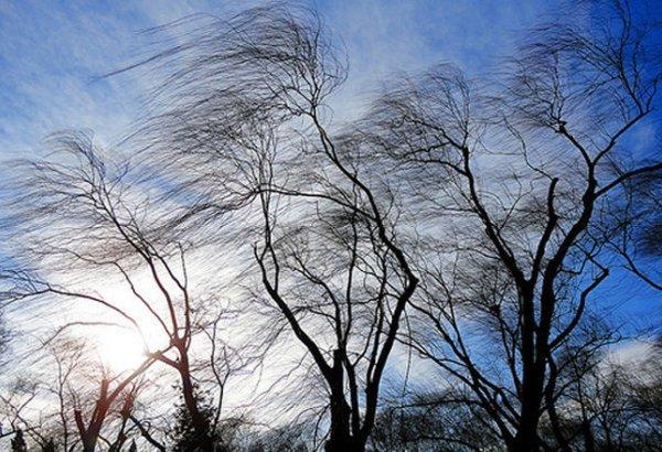Порывистый ветер прогнозируют в шести районах Якутии 12 октября